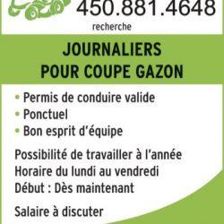 Gazons Oboute